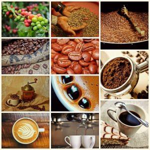 Фото результаты исследований о кофе